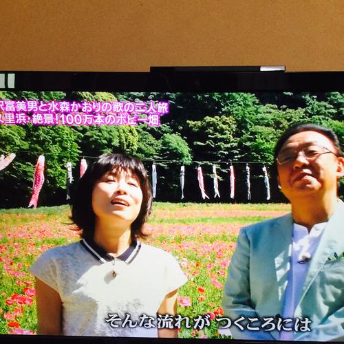 BS放送で、梅沢富美男さんと水森かおりさんが花の国を訪れる番組が流れていました。