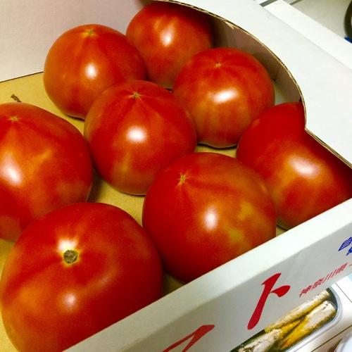 トマトを頂きました。