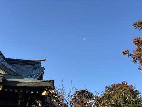 今朝も当日祈願を行いました。本殿屋根の横には有明の月が見えていました。